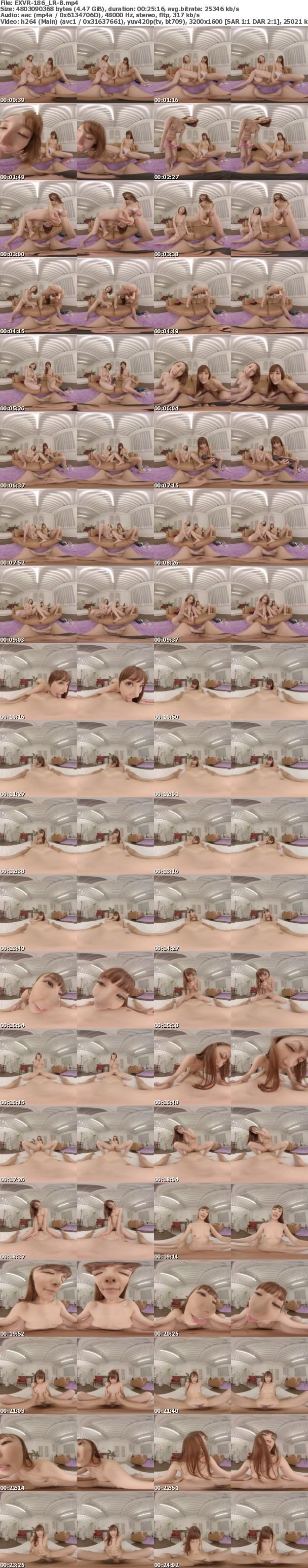 VR/3D EXVR-186 【匠】両隣のエロイお姉さんとほろ酔い王様ゲームでエロエロ連続ナマ中出しSEX! 希咲あや 小峰みこ