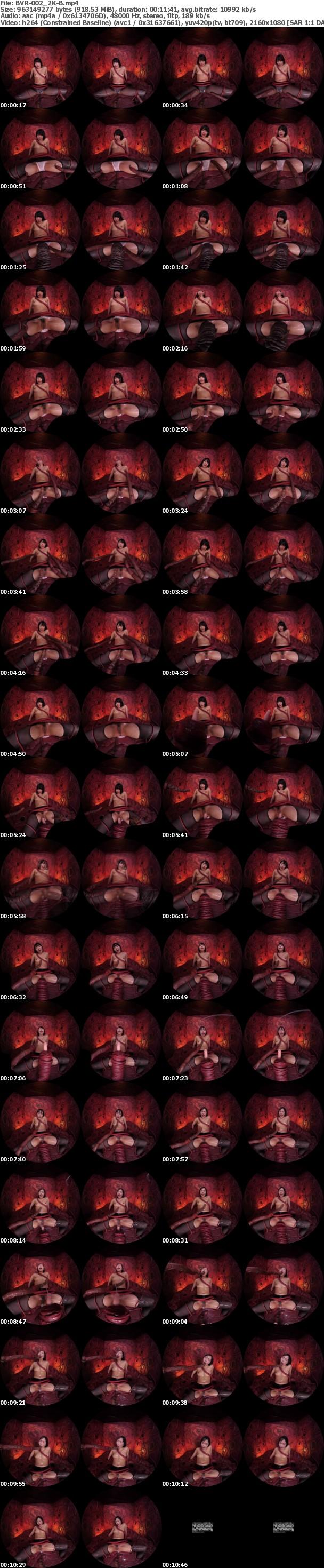 (VR) BVR-002 【4K匠】触手VR 第二章 囚われの美女 社長秘書 五十嵐星蘭