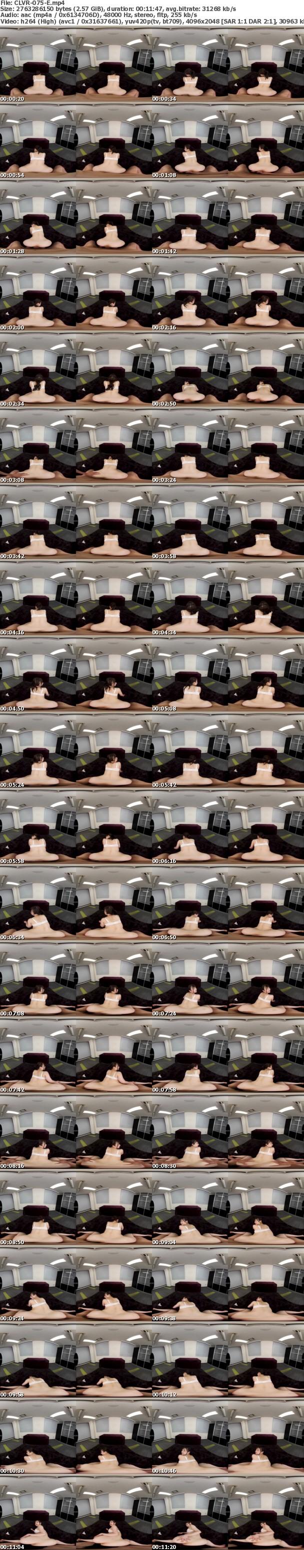 (VR) CLVR-075 俺の尻VR
