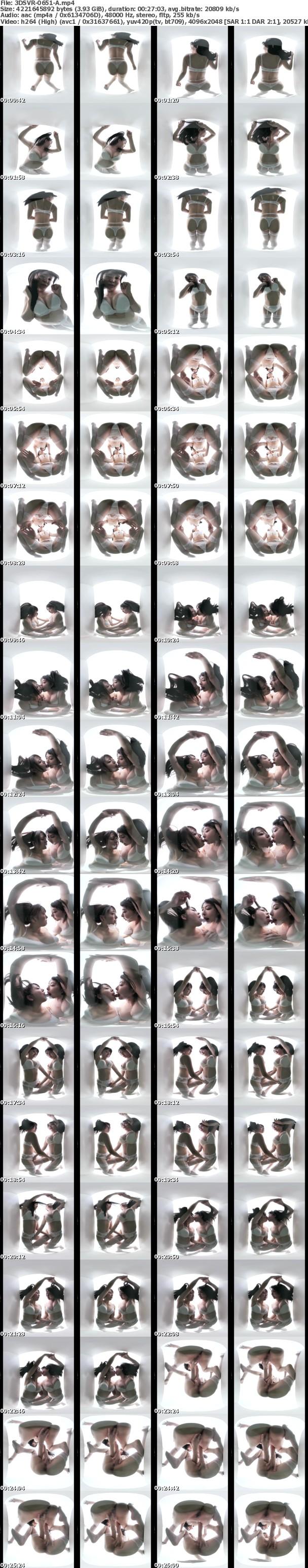 3DSVR-0651-A-screenshot