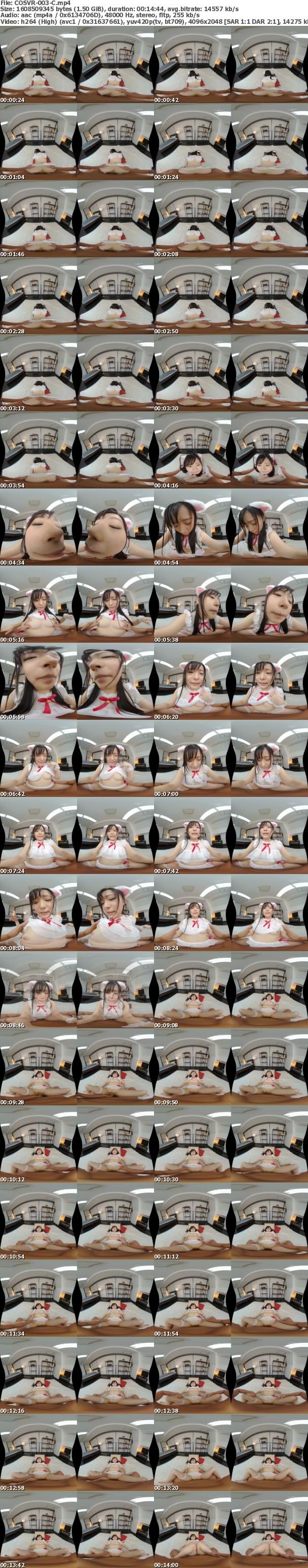 (VR) COSVR-003 ご主人さまが大好きなネコミミ少女のペロペロちゅぱちゅぱ舐め回しラブラブナマ中出しSEX 優木しの