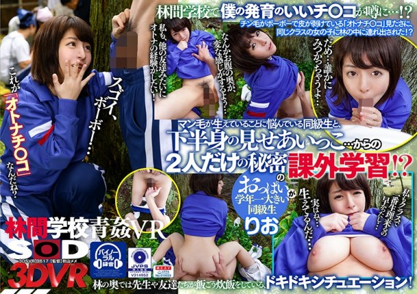 (VR) 3DSVR-0617 林間学校で青姦VR 同級生と下半身の見せあいっこ…からの2人だけの秘密の課外学習!? 石原理央