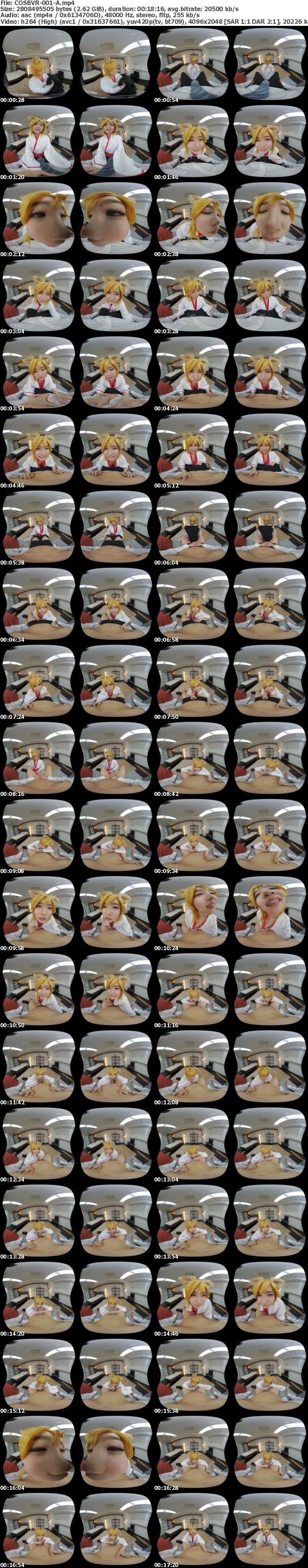 (VR) COSBVR-001 「わっちのナカにイッパイ中出してくりゃれ」枢木あおいちゃんが超絶可愛いのじゃロリ狐娘に大変身!世話焼き上手な萌え巫女狐娘