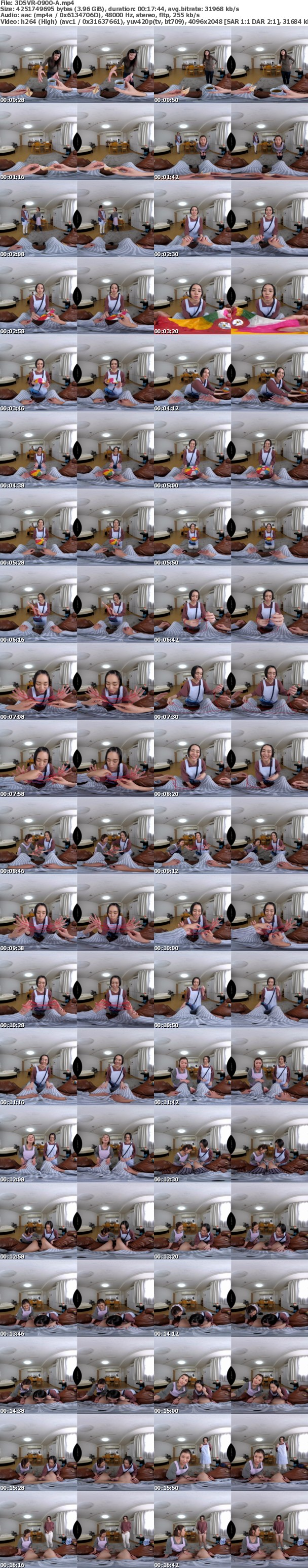 (VR) 3DSVR-0900 W介護VR 癒しのベテラン介護士と幸せ介護に恥じらう新人介護士