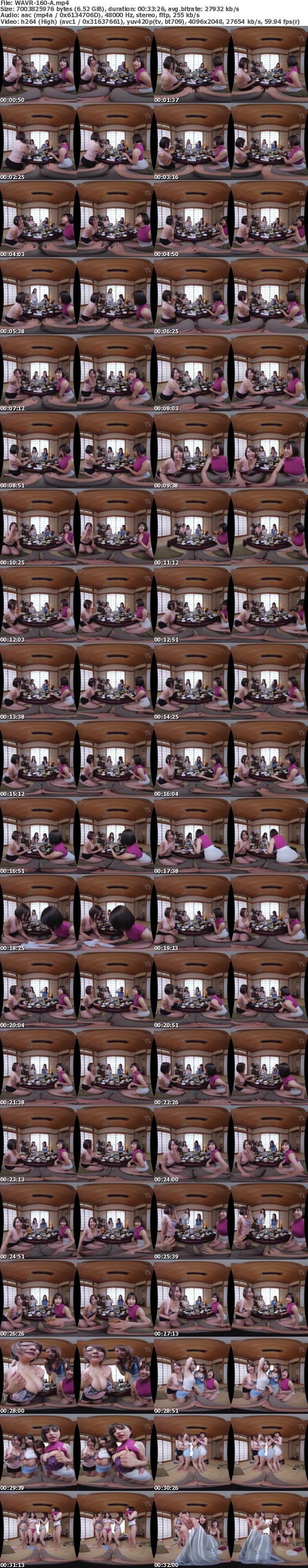 (VR) WAVR-160 酒池肉林!淫乱絶倫!ヤリマンサークルOBが集まる悪ノリ!ゲスノリ!ドスケベ同窓会 なぜか母ちゃんの代わりに同窓会に行くことになったんだが…助けてくれッ!